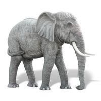 Thumbnail for 10ft Elephant