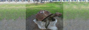 California Park - California