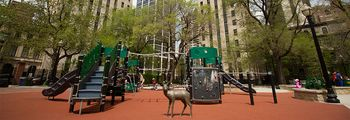 Goudy Square Playlot